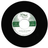 Silvertones - Wonderland Of Green / Westfinga & The 18th Parallel - dub (Fruits) 7""